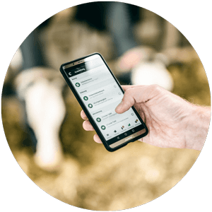 fodjan App for dairy cows